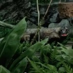The terrible hissing of Far Cry 3's Komodo dragons
